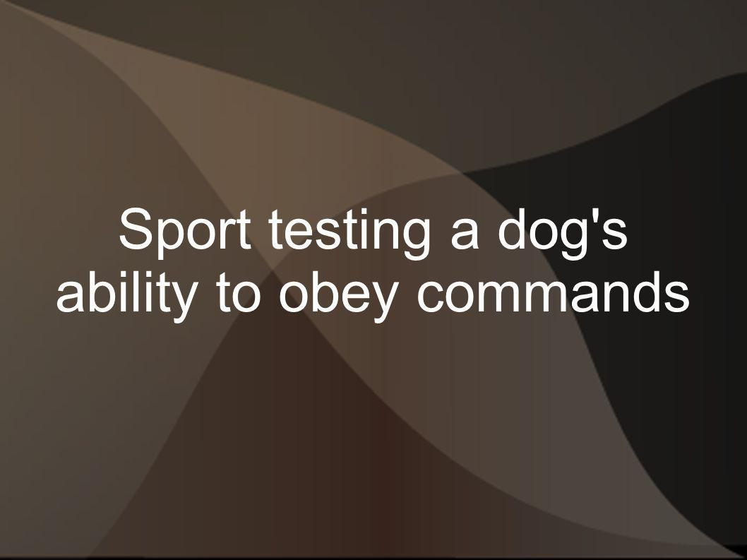 Sport testing a dog's ability to obey commands