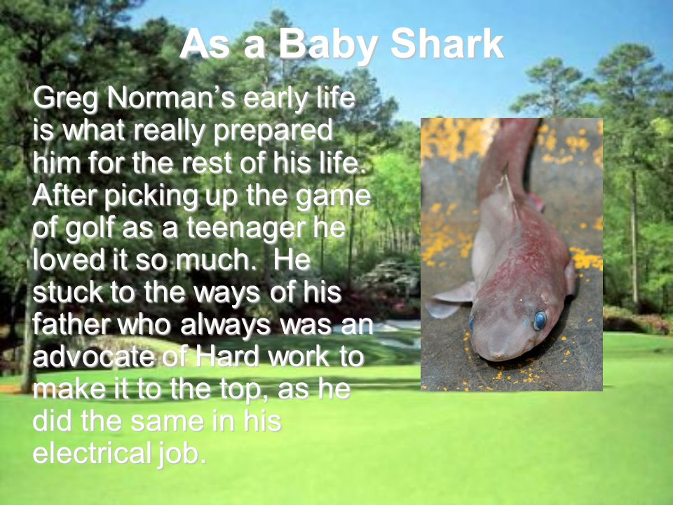As a Baby Shark Greg Normans early life is what really prepared him for the rest of his life.