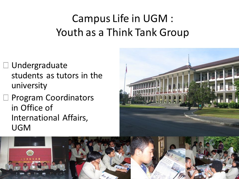 Campus Life in UGM : Youth as a Think Tank Group Undergraduate students as tutors in the university Program Coordinators in Office of International Affairs, UGM
