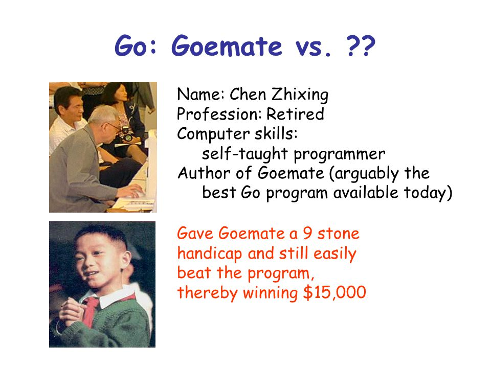 Go: Goemate vs. ?? Name: Chen Zhixing Profession: Retired Computer skills: self-taught programmer Author of Goemate (arguably the best Go program avai