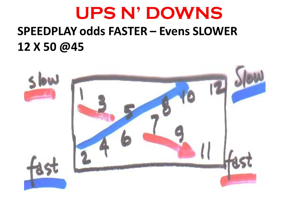 UPS N DOWNS SPEEDPLAY odds FASTER – Evens SLOWER 12 X 50 @45