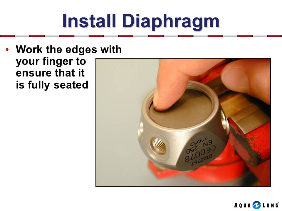 Install Diaphragm Work the edges with your finger to ensure that it is fully seated