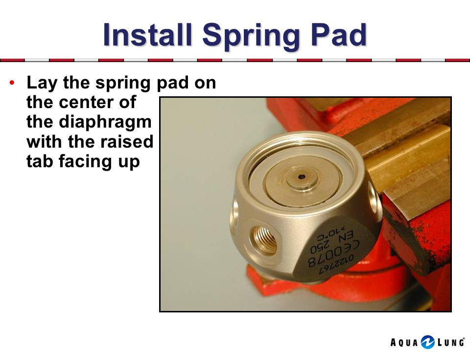 Install Spring Pad Lay the spring pad on the center of the diaphragm with the raised tab facing up