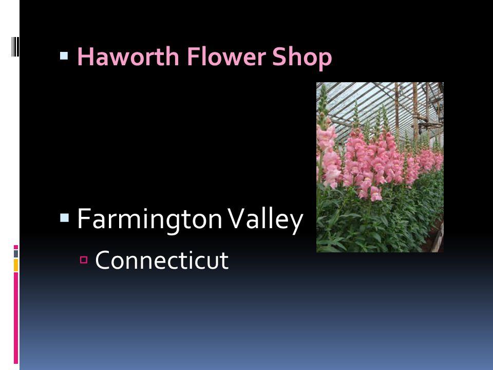 Haworth Flower Shop Farmington Valley Connecticut