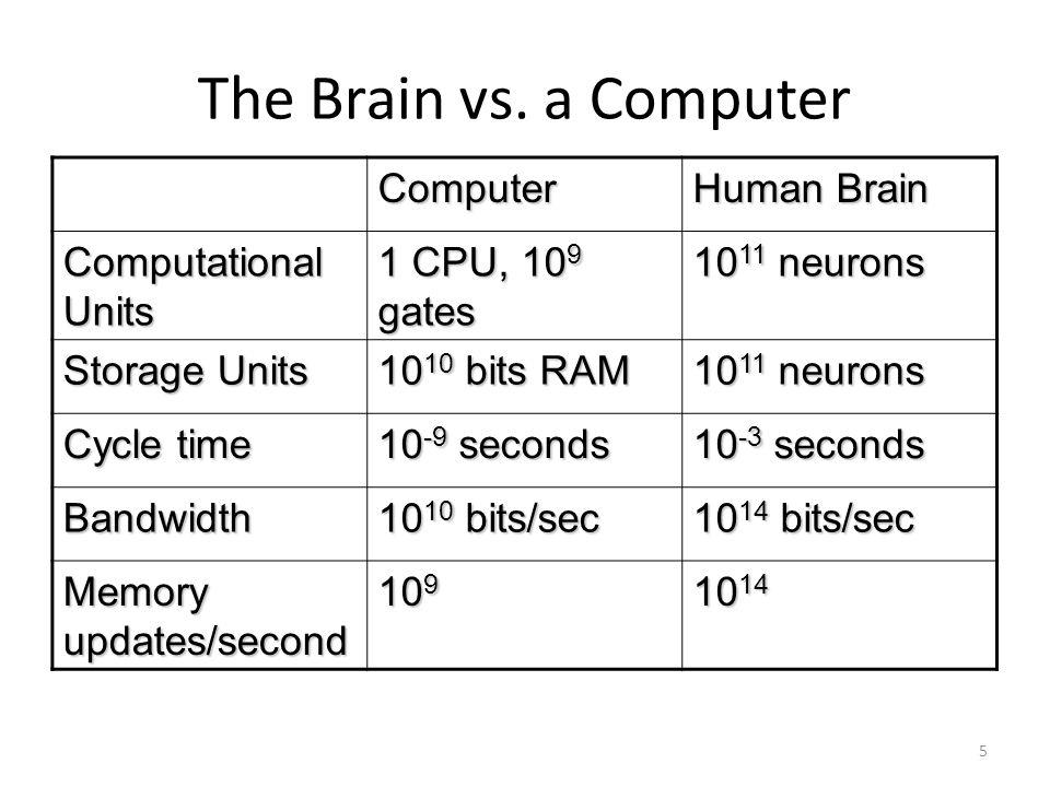 The Brain vs.