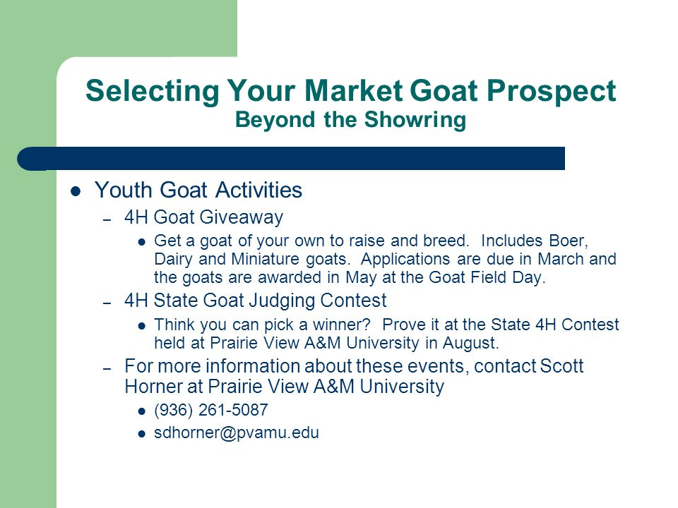 Selecting Your Market Goat Prospect Beyond the Showring Youth Goat Activities – 4H Goat Giveaway Get a goat of your own to raise and breed.