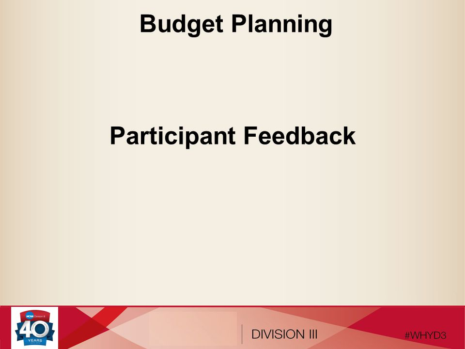 Budget Planning Participant Feedback