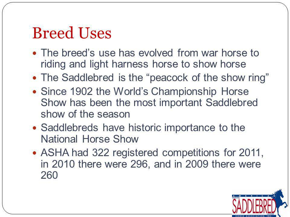 The breeds use has evolved from war horse to riding and light harness horse to show horse The Saddlebred is the peacock of the show ring Since 1902 th