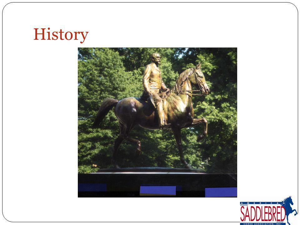 Sport Horse Year End Awards Designed to acknowledge, reward, and promote the versatility of the American Saddlebred Open to purebred and Half-Saddlebreds Disciplines include: Dressage driving hunter/jumper eventing distance riding