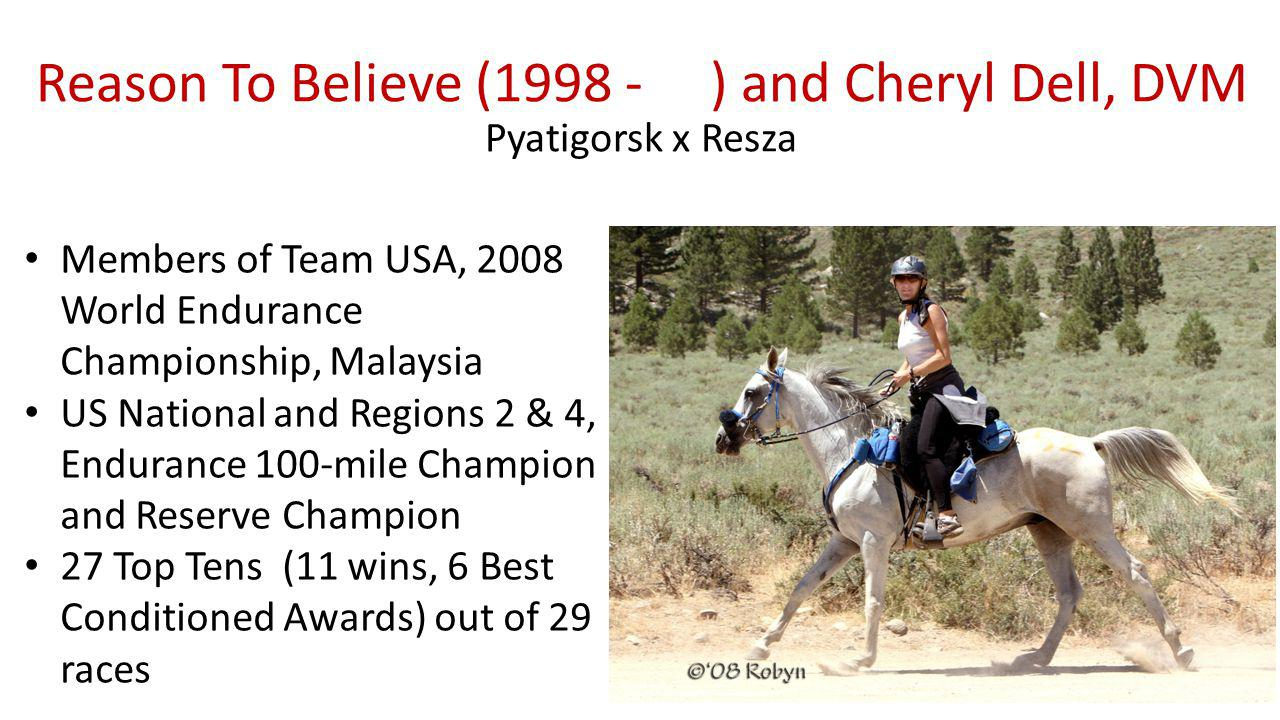 Reason To Believe (1998 - ) and Cheryl Dell, DVM Pyatigorsk x Resza Members of Team USA, 2008 World Endurance Championship, Malaysia US National and Regions 2 & 4, Endurance 100-mile Champion and Reserve Champion 27 Top Tens (11 wins, 6 Best Conditioned Awards) out of 29 races