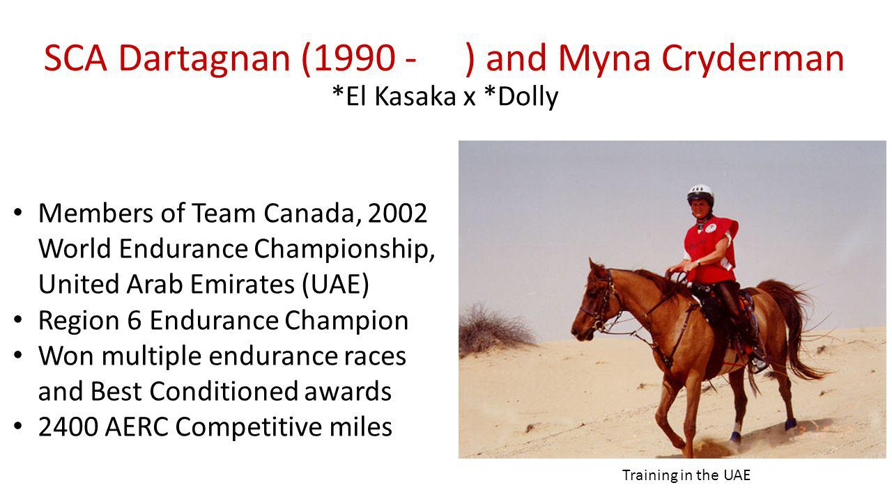 SCA Dartagnan (1990 - ) and Myna Cryderman *El Kasaka x *Dolly Members of Team Canada, 2002 World Endurance Championship, United Arab Emirates (UAE) Region 6 Endurance Champion Won multiple endurance races and Best Conditioned awards 2400 AERC Competitive miles Training in the UAE