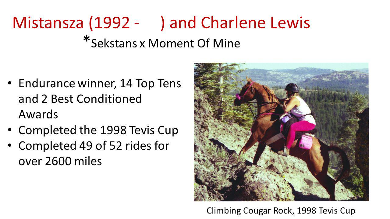 Mistansza ( ) and Charlene Lewis * Sekstans x Moment Of Mine Endurance winner, 14 Top Tens and 2 Best Conditioned Awards Completed the 1998 Tevis Cup Completed 49 of 52 rides for over 2600 miles Climbing Cougar Rock, 1998 Tevis Cup
