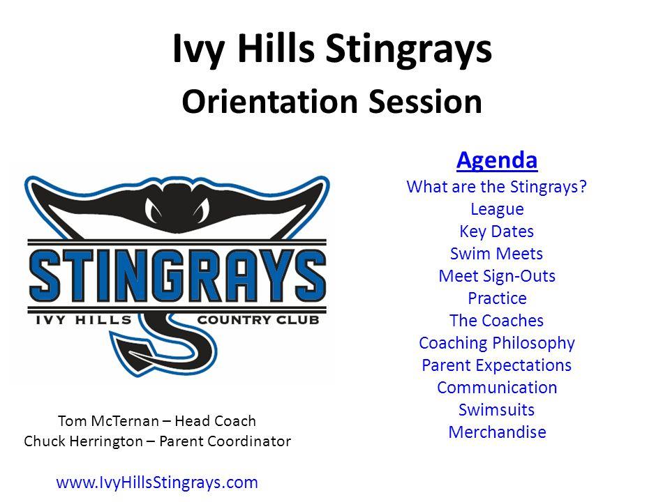 Agenda What are the Stingrays.