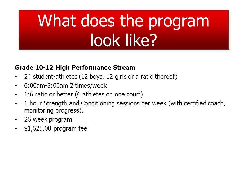What does the program look like.
