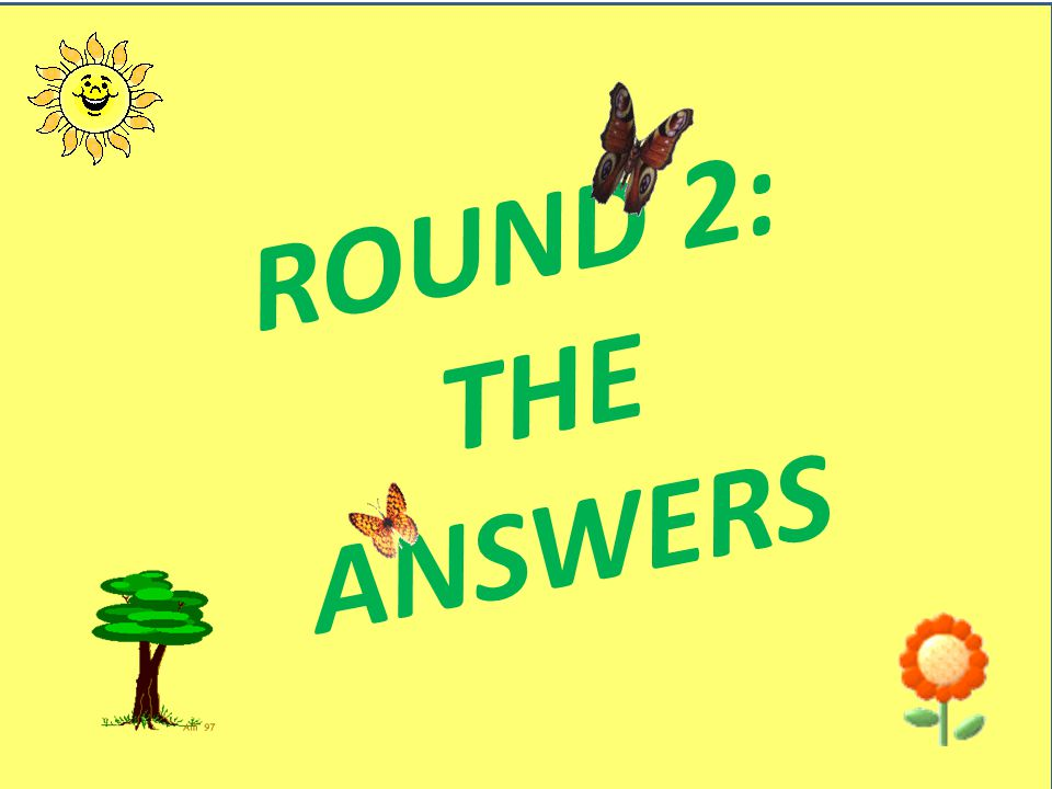 ROUND 2: THE ANSWERS