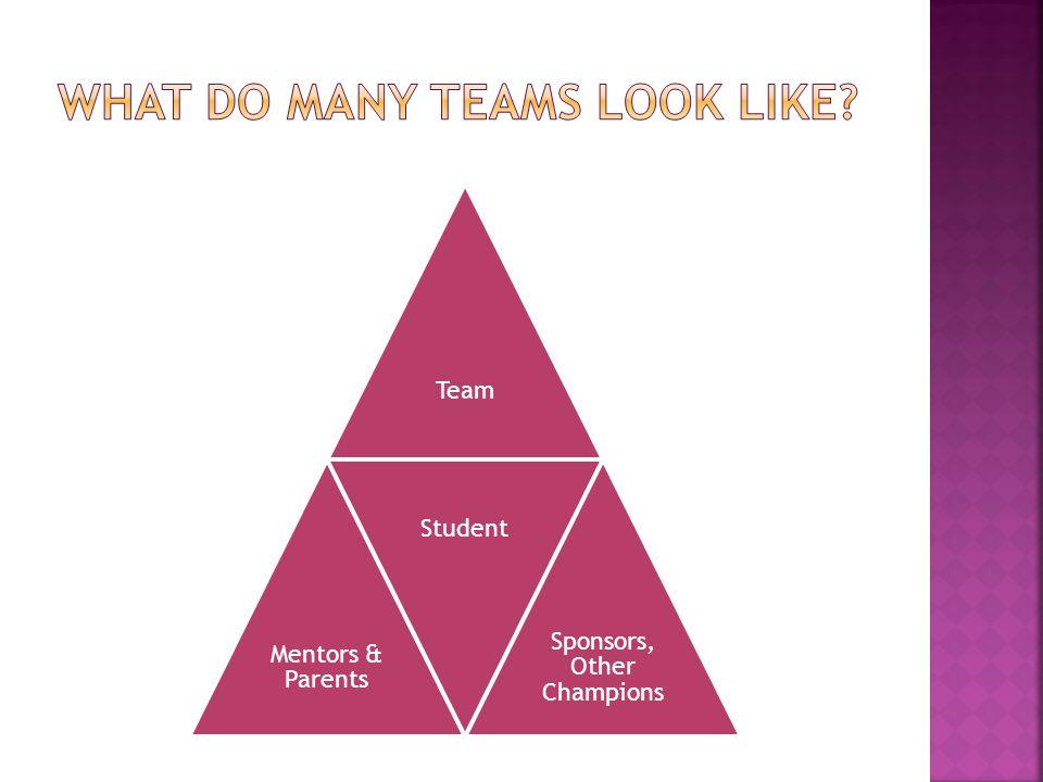 Team Mentors & Parents Student Sponsors, Other Champions