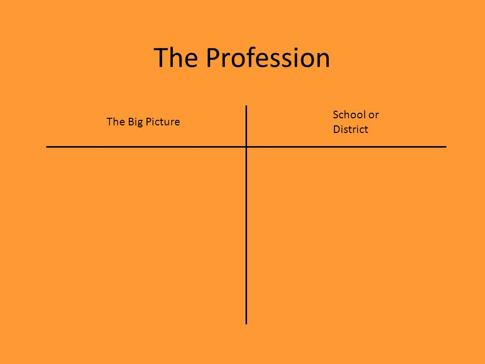 The Profession The Big Picture School or District