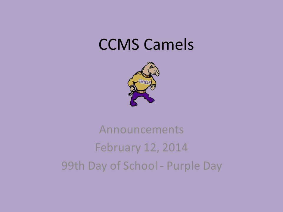 CCMS Camels Announcements February 12, 2014 99th Day of School - Purple Day