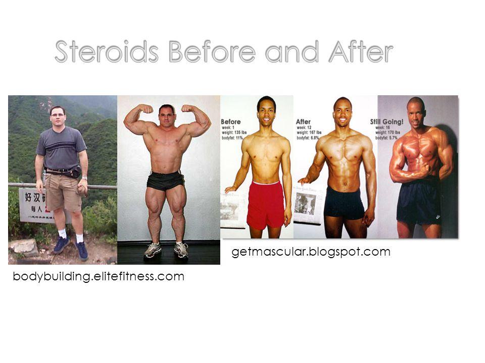 bodybuilding.elitefitness.com getmascular.blogspot.com