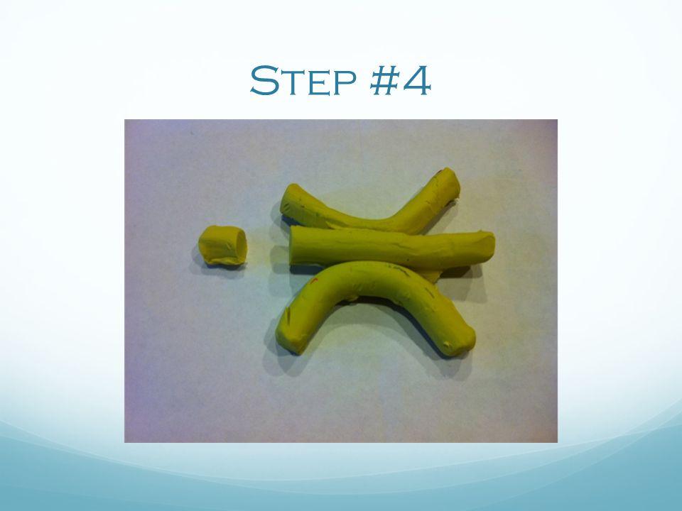 Step #4