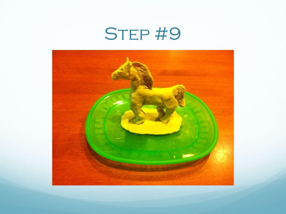 Step #9