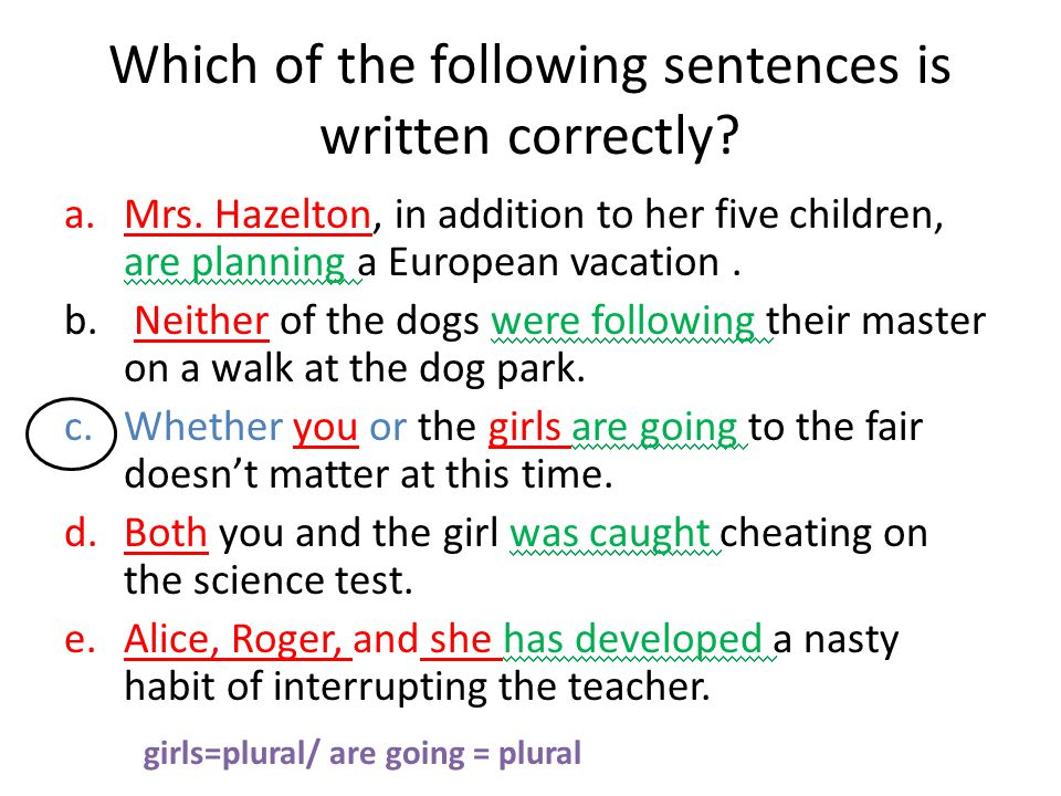 Which of the following sentences is written correctly.