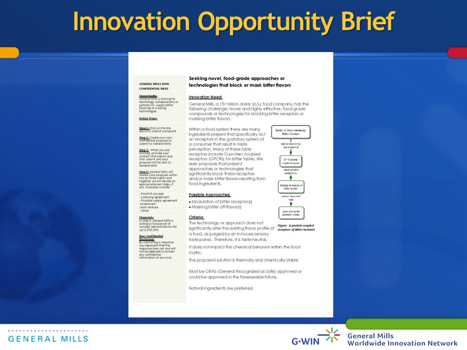 (Leverage iNNo360) Innovation Opportunity Brief