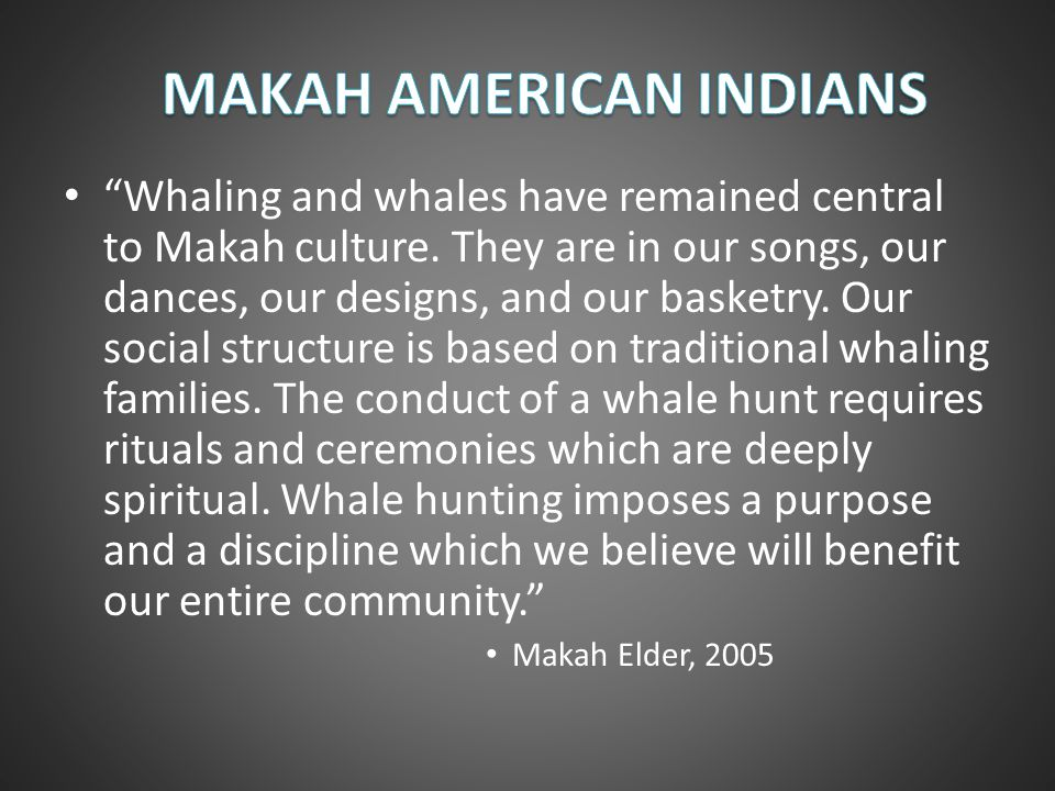 Whaling and whales have remained central to Makah culture. They are in our songs, our dances, our designs, and our basketry. Our social structure is b