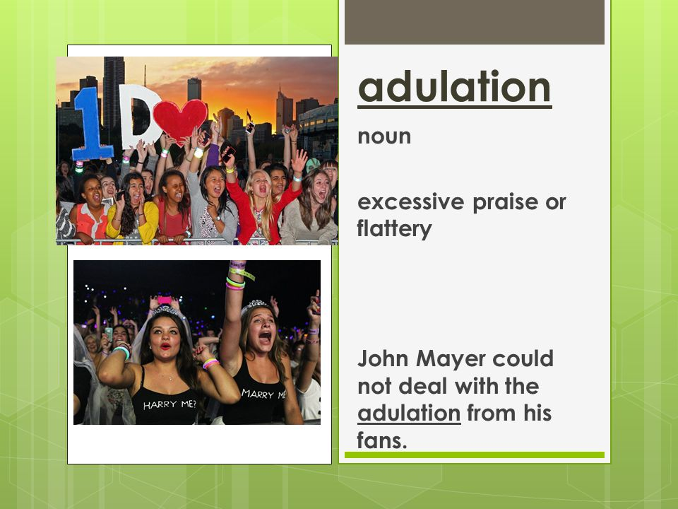 adulation noun excessive praise or flattery John Mayer could not deal with the adulation from his fans.