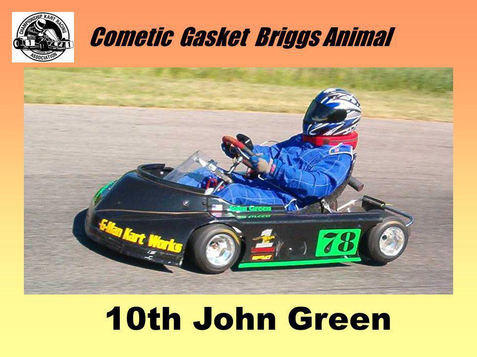 Cometic Gasket Briggs Animal 10th John Green