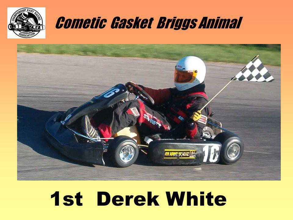 Cometic Gasket Briggs Animal 1st Derek White