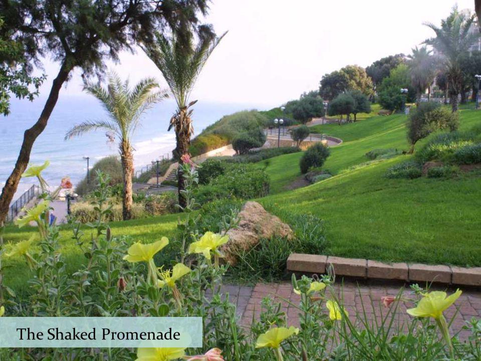 Netanya has the longest promenade in Israel - runs along over 9 km of stunning sea view