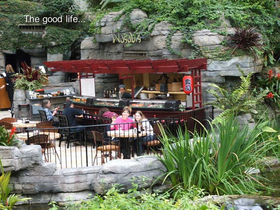 The good life...