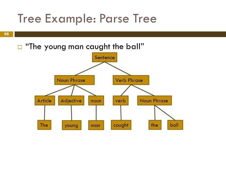 Tree Example: Parse Tree 55 The young man caught the ball Sentence Verb PhraseNoun Phrase verbNoun Phrase caughttheball ArticleAdjectivenoun The young