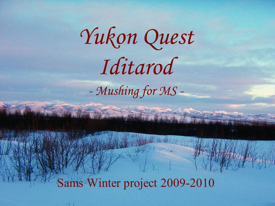 Yukon Quest Iditarod - Mushing for MS - Sams Winter project 2009-2010