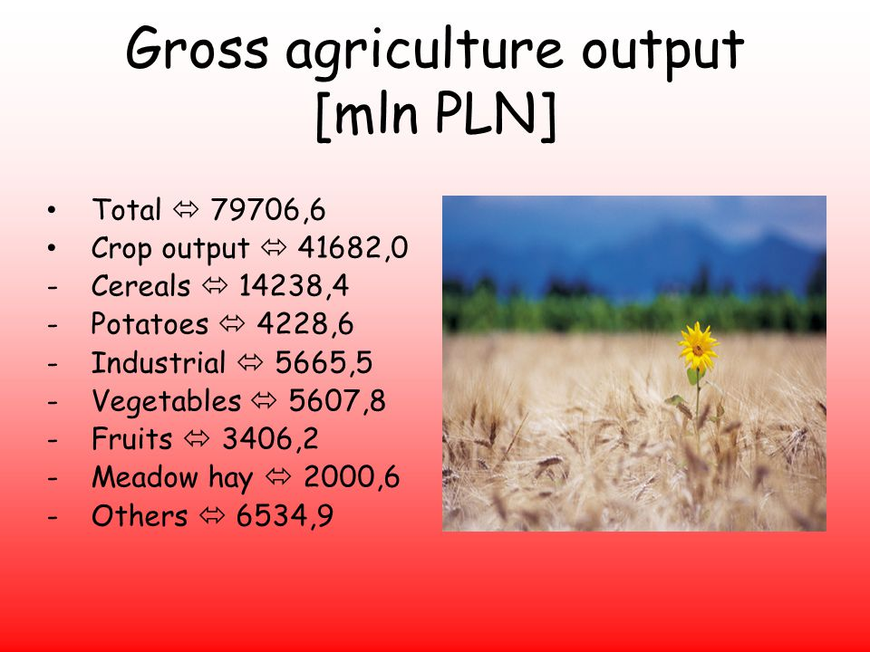 Gross agriculture output [mln PLN] Total 79706,6 Crop output 41682,0 -Cereals 14238,4 -Potatoes 4228,6 -Industrial 5665,5 -Vegetables 5607,8 -Fruits 3406,2 -Meadow hay 2000,6 -Others 6534,9