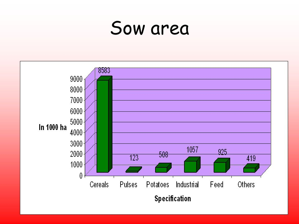 Sow area