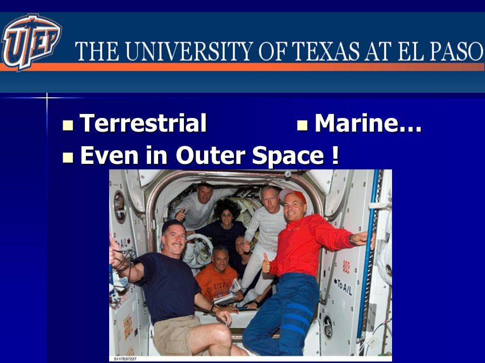 Terrestrial Terrestrial Marine… Marine… Even in Outer Space ! Even in Outer Space !