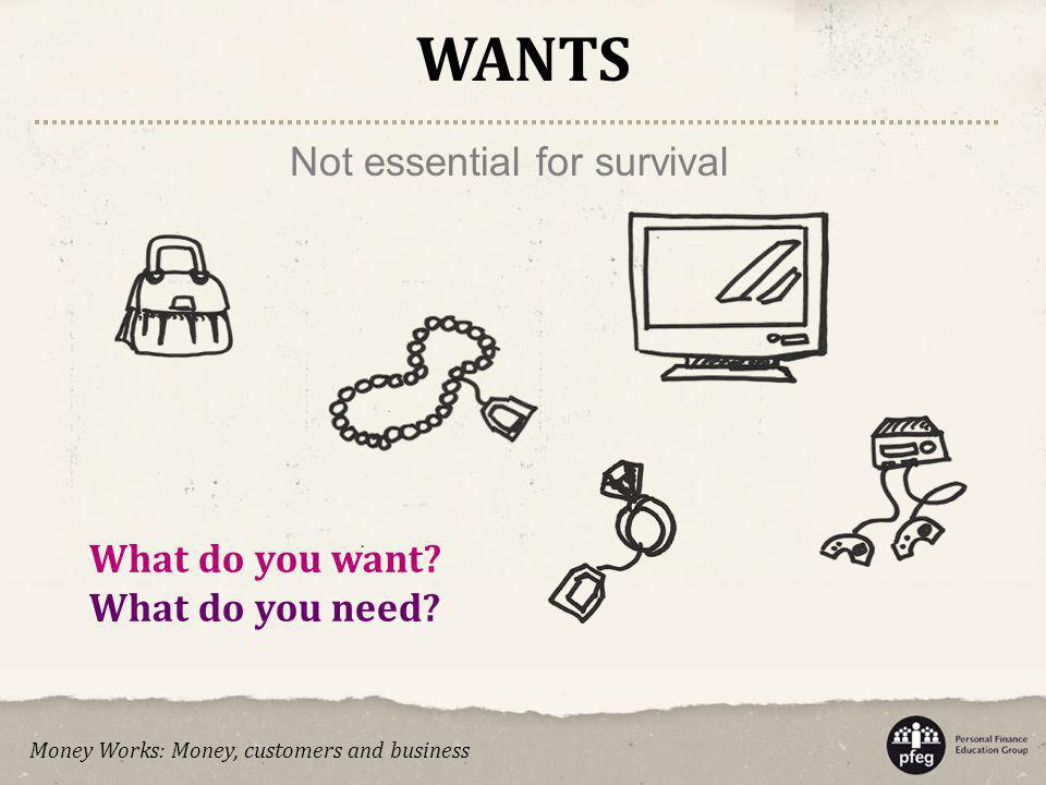 What do you want? What do you need? WANTS Not essential for survival Money Works: Money, customers and business