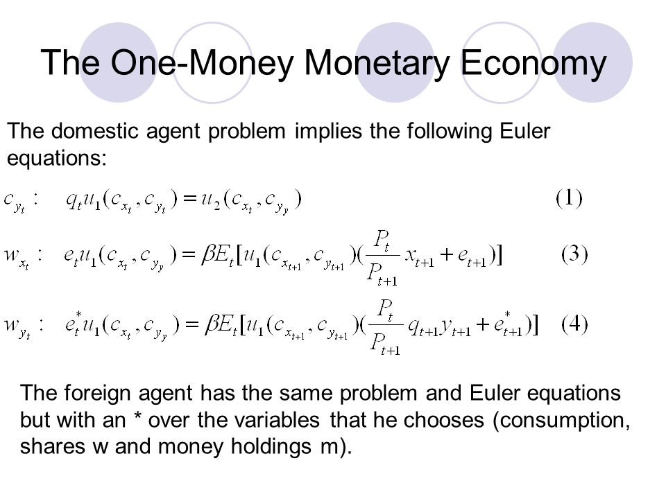 The One-Money Monetary Economy The domestic agent problem implies the following Euler equations: The foreign agent has the same problem and Euler equa