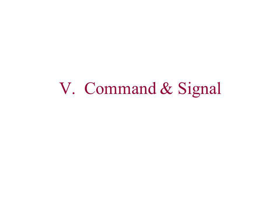 V. Command & Signal