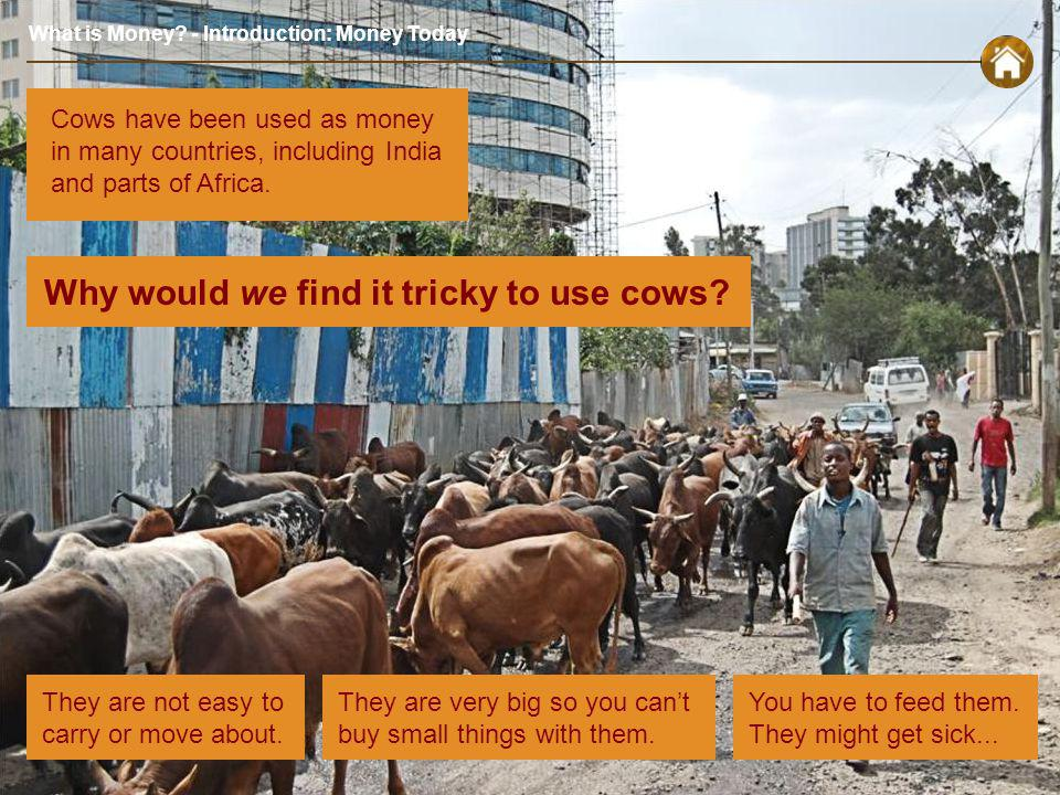 What is Money. - Introduction: Money Today Why would we find it tricky to use cows.