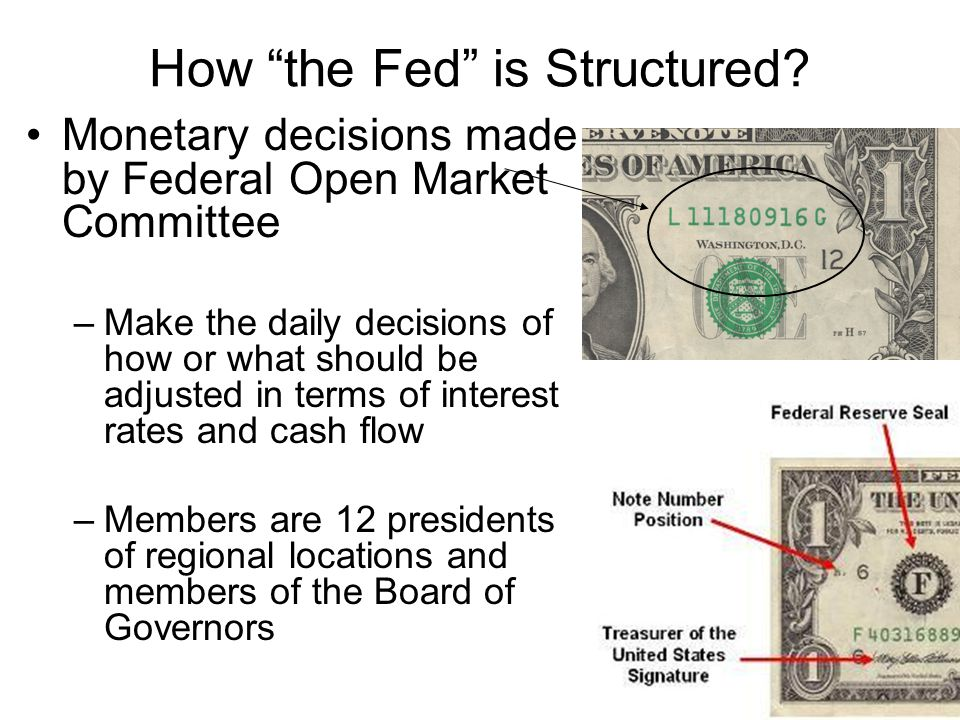 How the Fed is Structured.