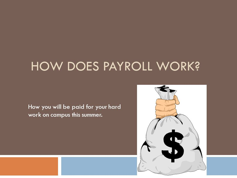 HOW DOES PAYROLL WORK How you will be paid for your hard work on campus this summer.
