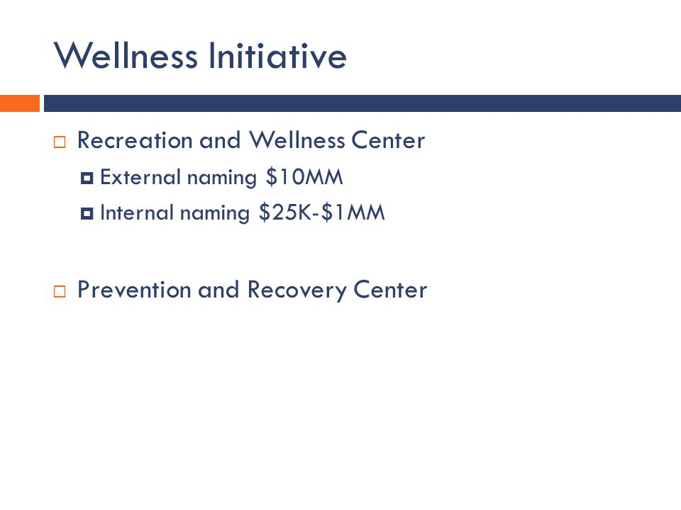 Wellness Initiative Recreation and Wellness Center External naming $10MM Internal naming $25K-$1MM Prevention and Recovery Center