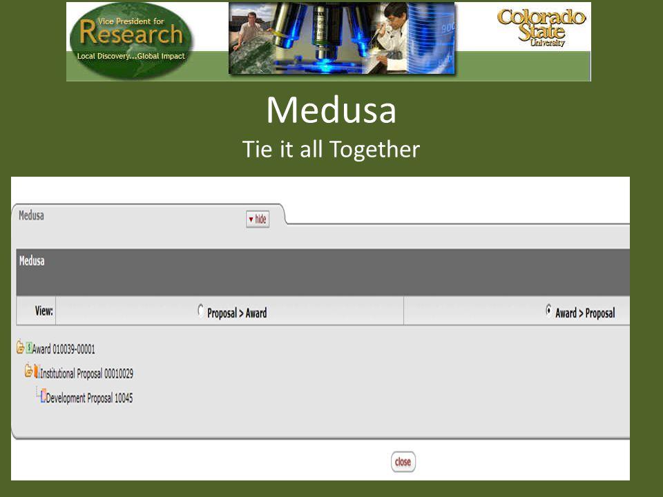 Medusa Tie it all Together