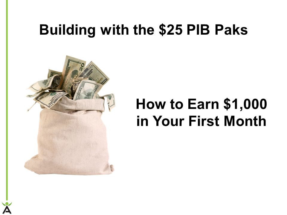 How to Earn $1,000 in Your First Month Building with the $25 PIB Paks