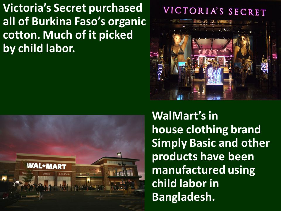Victorias Secret purchased all of Burkina Fasos organic cotton.