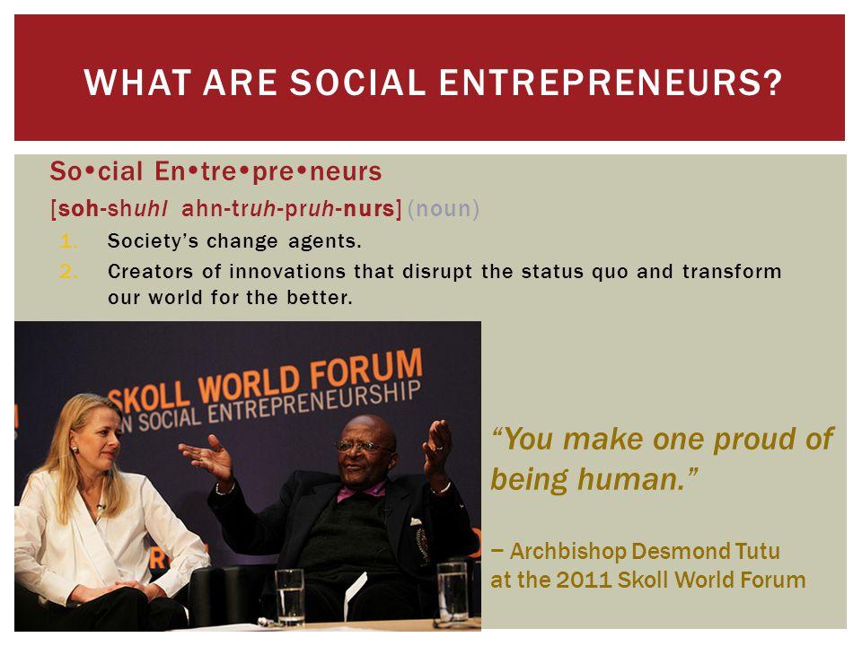 WHAT ARE SOCIAL ENTREPRENEURS.
