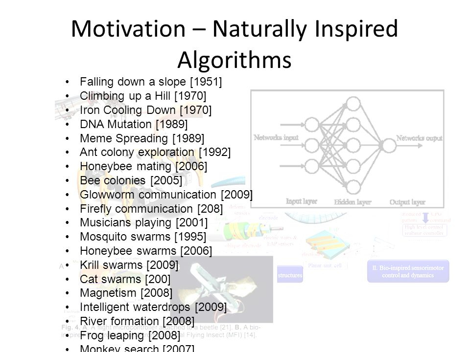 Zoo algorithm? You got scooped! (In submission)